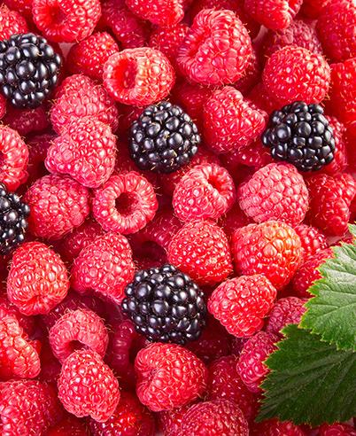 Fruites vermelles