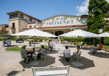 Freixenet wine ourism activities are back!