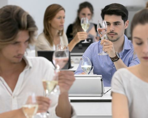 Introduction to Tasting